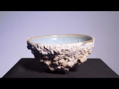 Covered in Coral and History | Asian Art Ceramics