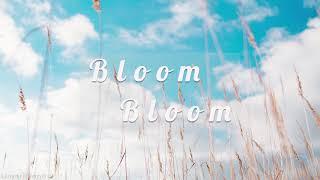 The boyz(더보이즈) - 'bloom bloom' piano cover 피아노커버입니다. hope you enjoy! 모든 커버곡은 악보 없이 청음만으로 편곡하고 연주하며, 제작 계획은 당분간 없습니다. 유튜브 내에서 엠알이나 브금으로 사용을 원하실 경우 채널명과 링크를...