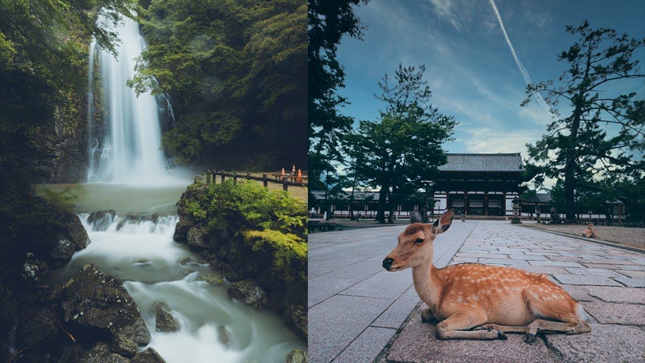 Whatever You Choose 後悔しない生き方を/ Osaka, Minoh Falls / Nara, Mt. Wakakusa
