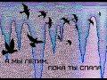 и летим мы вместе с птицами