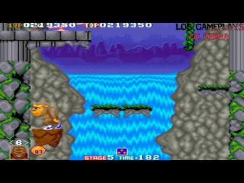 Arcade - Toki | TAD