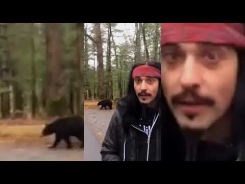 Pirate Steve attempts to advertise Judge Jules Global Warm Up while a Bear is behind him
