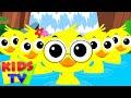 Download Finger Family Ducks | Nursery Rhymes For Children | kids Songs | kids Tv Nursery Rhymes For Children
