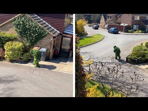 Neighbour-Dresses-Up-As-Bush-To-Sneak-Out