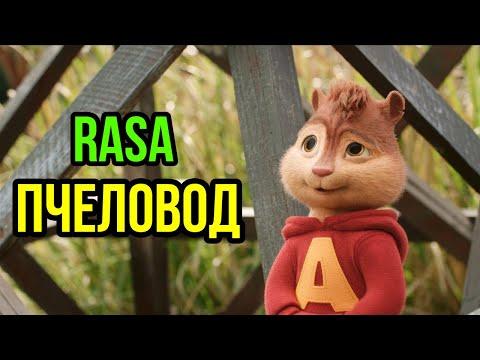Элвин и Бурундуки поют Пчеловод (RASA)