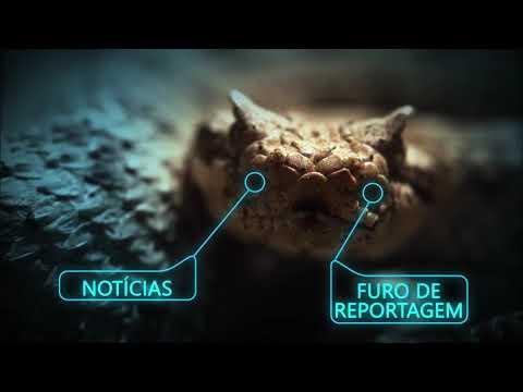 Balanço Geral Especial estreia neste sábado (17) na Record TV