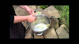 Making Meadowsweet Cordial: Meadowsweet Part 2