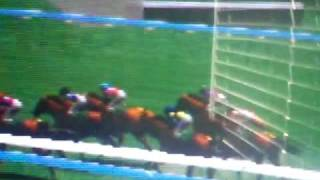 Gallop Racer 2001 no. two!