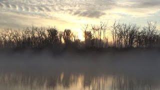 Рыбалка 21 мая на реке Дон Карась клевал Сазан нет