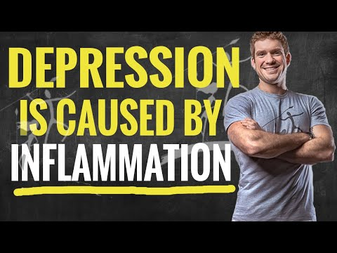 the-root-causes-of-depression-(inflammation-in-the-brain)
