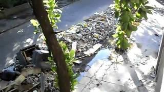 Lixo em Triagem, Rio de Janeiro. Data: 13/04/10.