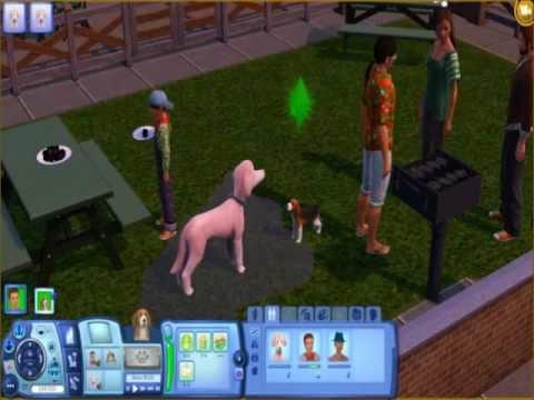 The Sims 3 Pets-Gameplay#1:Interazioni Sim e Animali - YouTube