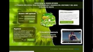 www.mykiwis.com