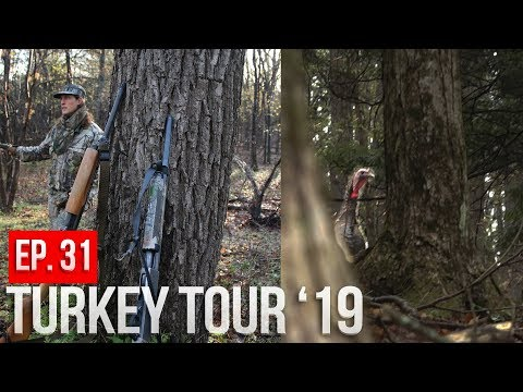 NEW YORK PUBLIC LAND TURKEY HUNTING - First Day Action!