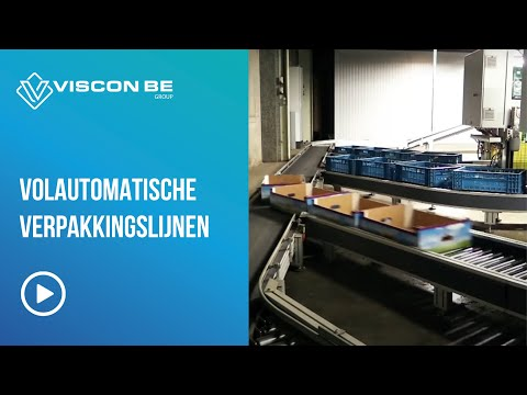 VISCON BE: Packing line for Potatoes