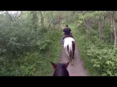 GALENA TERRITORY HORSEBACK RIDING