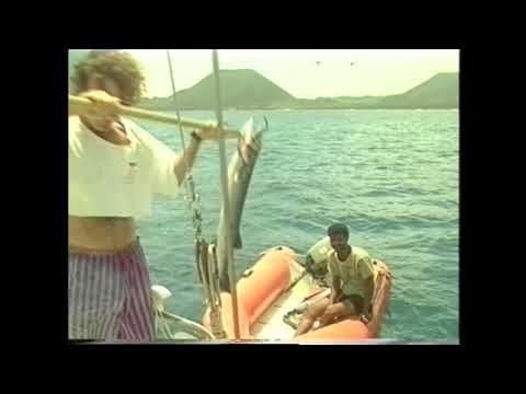 Sailing boat Sara sails to the Hamish Islands in Yemen