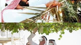 محمد بن زايد: دايما لما اتذكر كلام الوالد واشوف المزارع هي دخل وهي أمان واستقرار للوطن والمواطن