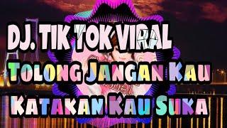 Download lagu DJ. TOLONG JANGAN KAU KATAKAN KAU SUKA || MASIH DISINI MASIH DENGANMU REMIX FULLBASS