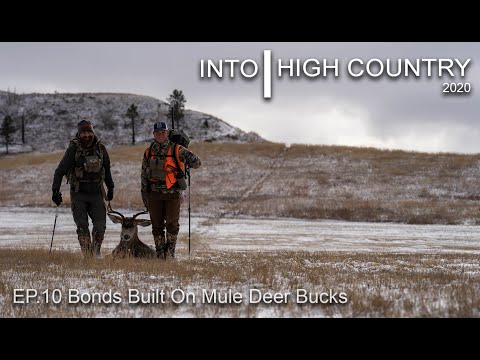 Bonds Built on