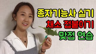 [종자기능사]실기대비 채소접붙이기 맞접