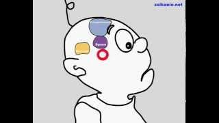 Мозг, речевой аппарат и заикание v2