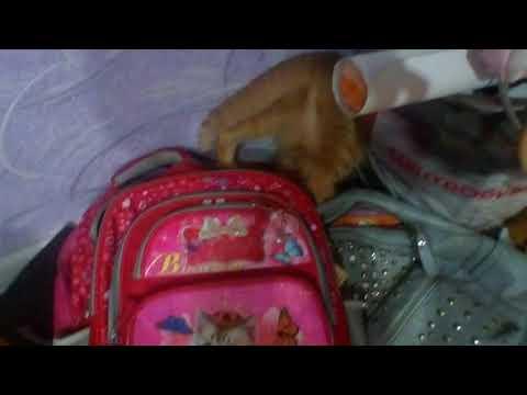 Клип Вера Брежнева – Мамочка « смотреть клип Мамочка