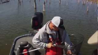 Video Lake Fork Sight Fishing download MP3, 3GP, MP4, WEBM, AVI, FLV Juli 2018