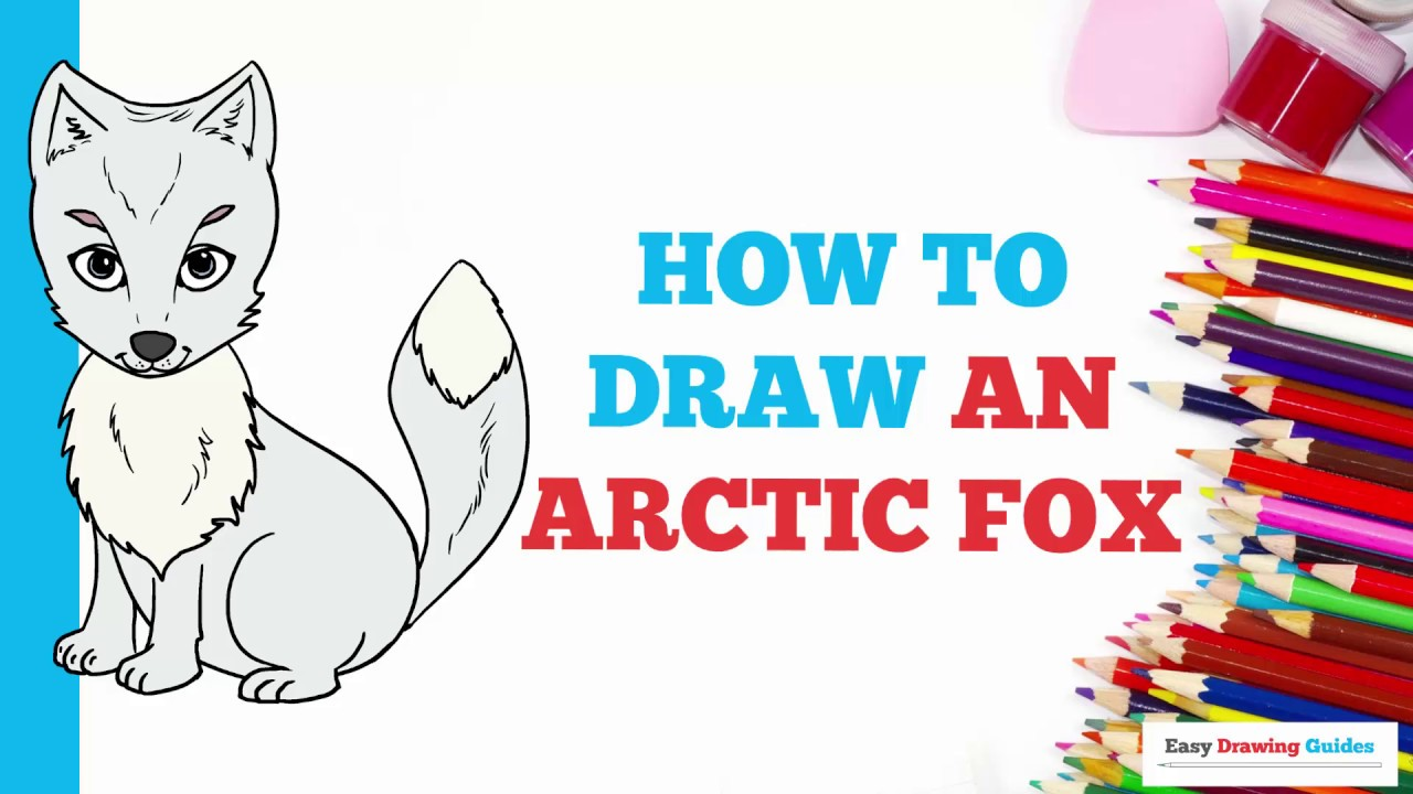 How to draw an arctic fox in a few easy steps drawing tutorial for kids and beginners
