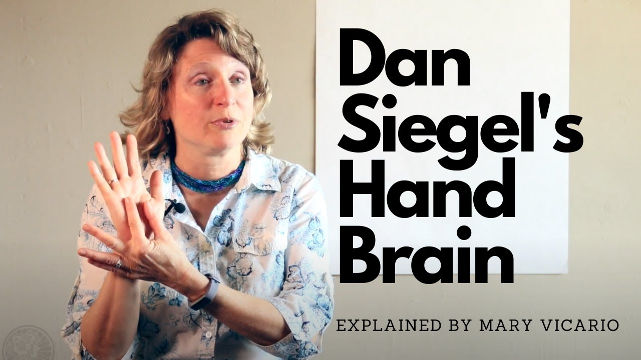 Dan Siegel's Hand Brand explained by Mary Vicario