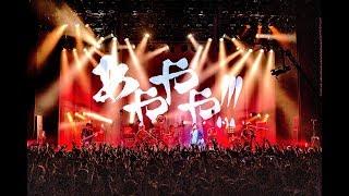 【LIVE】オメでたい頭でなにより - 「言葉のあやや」2019.4.4@マイナビBLITZ赤坂