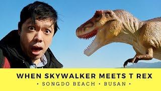 BUSAN SOUTH KOREA 🇰🇷 | SONGDO BEACH Skywalker meets T Rex