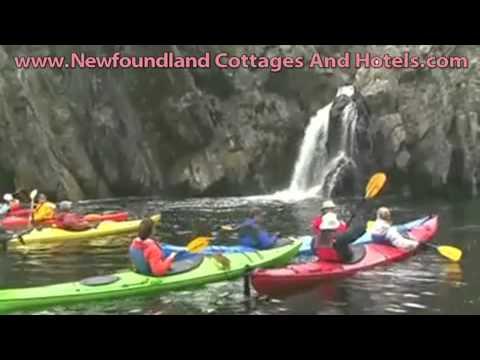Newfoundland Hotels- Bear Cove Inn Bed and Breakfast