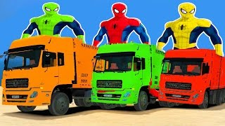 SPIDERMAN & COLOR DUMP TRUCKS for Kids in Cars Cartoon for Children w Nursery Rhymes Kid Songs