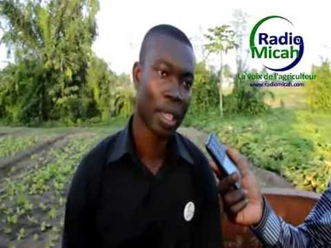 TOGO/ Les futurs et jeunes agriculteurs de la Jat outillés sur l'entreprenariat agricole.