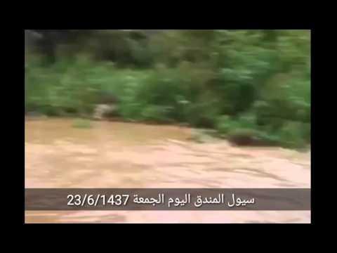 سيول المندق اليوم الجمعة 23/6/1437