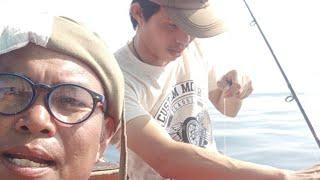 สนุกๆกับปลาเหลือง ปลากับข้าว