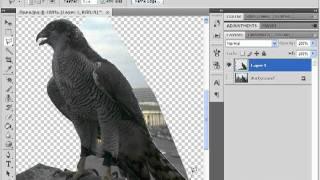 Фотомонтаж в Photoshop(В данном видеоуроке мы расскажем как перенести объект с одной фотографии на другую при помощи Adobe Photoshop...., 2011-12-06T22:09:17.000Z)