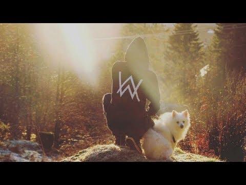 alan-walker-&-kygo---castles-(-official-music-video-)