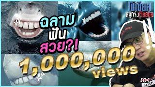 ฉลามกินแมว!! : โซเชียลสนุกจังโว้ย l VRZO