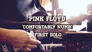 """Pink floyd - """"comfortably numb"""" first solo (pulse live)full ending https://youtu.be/0n2217y2pva"""