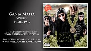 Download 11. Ganja Mafia - Wirus (prod. PSR) MP3 song and Music Video