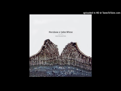 Merzbow & John Wiese - New Wave Dust 2