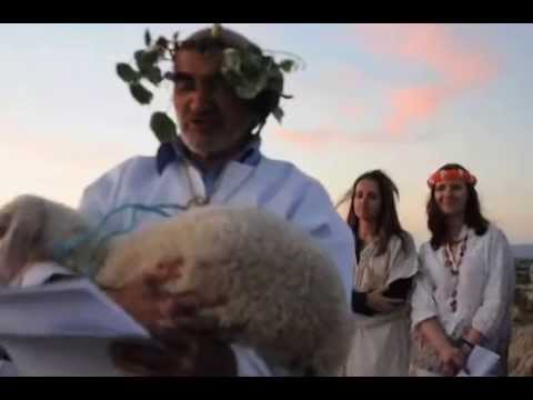 A Videira   Poema de Hamilton Tavares   Chãs Foz Côa   Templos do Sol