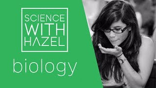 OCR 21st Century Science (Biology B4,5&6, June 2015) - GCSE Biology Questions - SCIENCE WITH HAZEL