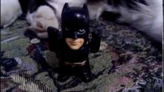 Кот vs Бэтмен 2.0 Нереальная битва