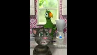 Прикол - смешной и прикольный попугай, забавный попугай, попугай,Кеша - Мультик для детей