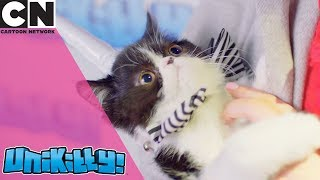 Unikitty! | Funny Cats on the Red Carpet | Cartoon Network