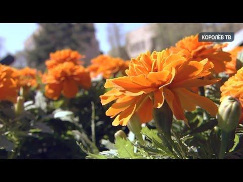 Новую школу в микрорайоне Валентиновка откроют уже в этом году