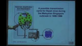 Epidemiology and Prevention of Human Nipah Virus Infection by Steve Luby, MD
